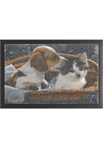 HANSE Home Fussmatte »Animals 2«, rechteckig, 7 mm Höhe, Fussabstreifer, Fussabtreter, Schmutzfangläufer, Schmutzfangmatte, Schmutzfangteppich, Schmutzmatte, Türmatte, Türvorleger, rutschhemmend beschichtet kaufen