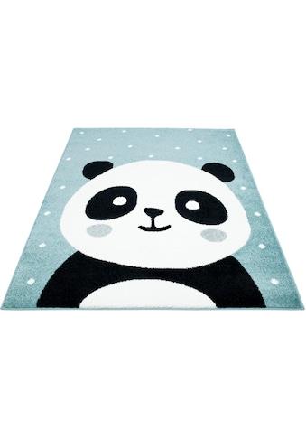 Carpet City Kinderteppich »Bubble Kids 1334«, rechteckig, 11 mm Höhe, Panda Bär in pastell Farben, Kurzflor kaufen