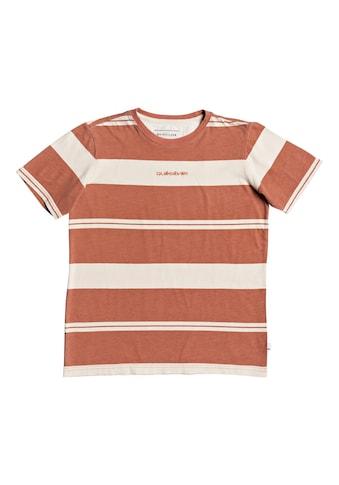 Quiksilver T - Shirt »Maxed Hero« kaufen
