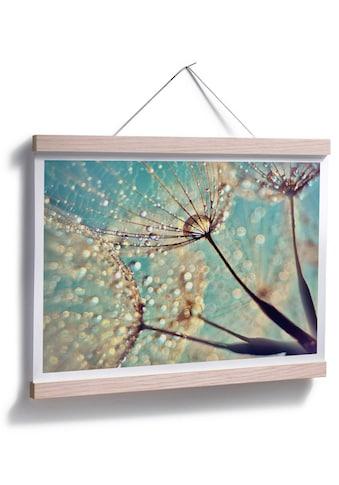Wall-Art Poster »Magische Pusteblume«, Blumen, (1 St.) kaufen