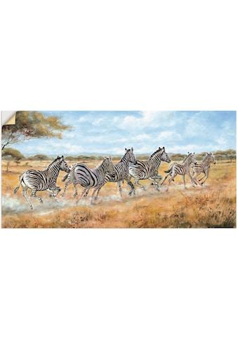 Artland Wandbild »Laufende Zebras« kaufen