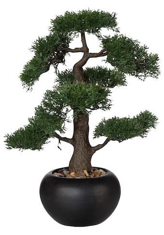 Creativ green Kunstbonsai »Bonsai« (1 Stück) kaufen
