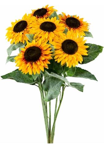 Creativ green Kunstblume »Sonnenblume« (Set, 6 Stück) acheter