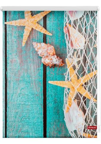 LICHTBLICK Seitenzugrollo »Klemmfix Motiv Bretter Beach«, Lichtschutz, ohne Bohren, freihängend, bedruckt kaufen