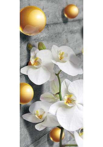 CONSALNET Vliestapete »ORCHIDEE«, 211 x 91 cm kaufen