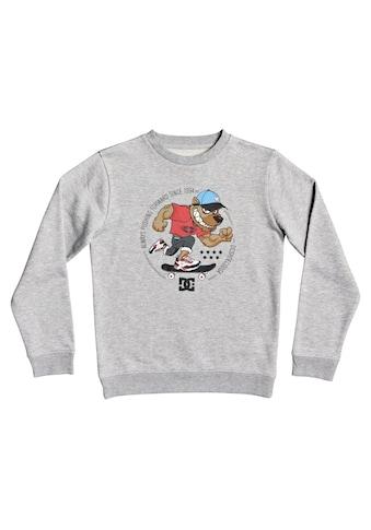 DC Shoes Sweatshirt »Pitbowl« acheter