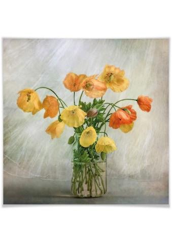 Wall-Art Poster »Mohnblumen im Glas«, Blumen, (1 St.) kaufen