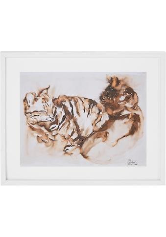 Guido Maria Kretschmer Home&Living Bild »Katzen«, von Frank Mutters kaufen
