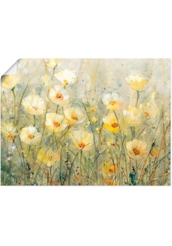 Artland Wandbild »Sommer in voller Blüte I«, Blumenwiese, (1 St.), in vielen Grössen & Produktarten - Alubild / Outdoorbild für den Aussenbereich, Leinwandbild, Poster, Wandaufkleber / Wandtattoo auch für Badezimmer geeignet kaufen