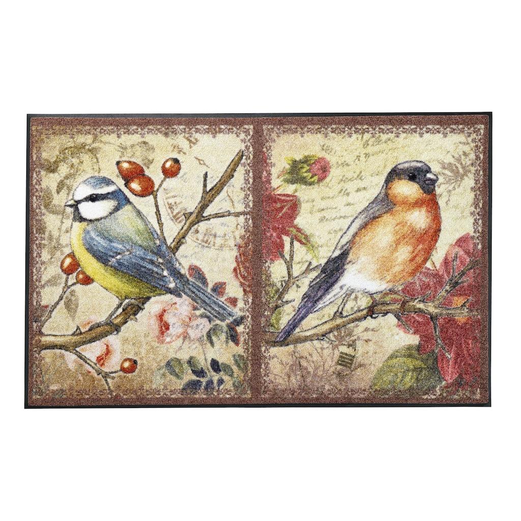 Fussmatte Vögel