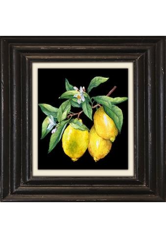 queence Leinwandbild »Zitronen« kaufen