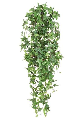 Creativ green Kunstranke »Pitsburgh-Efeu« kaufen