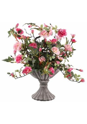 I.GE.A. Kunstpflanze »Wildrosen« kaufen