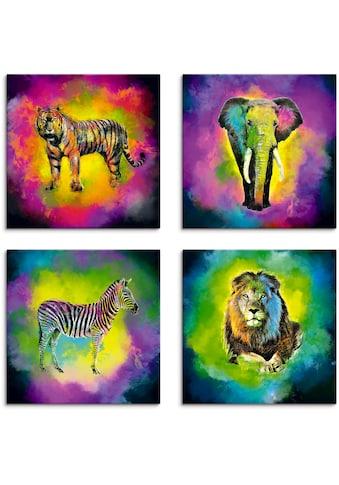 Artland Leinwandbild »Farbexplosion Elefant Löwe Zebra Tiger« kaufen