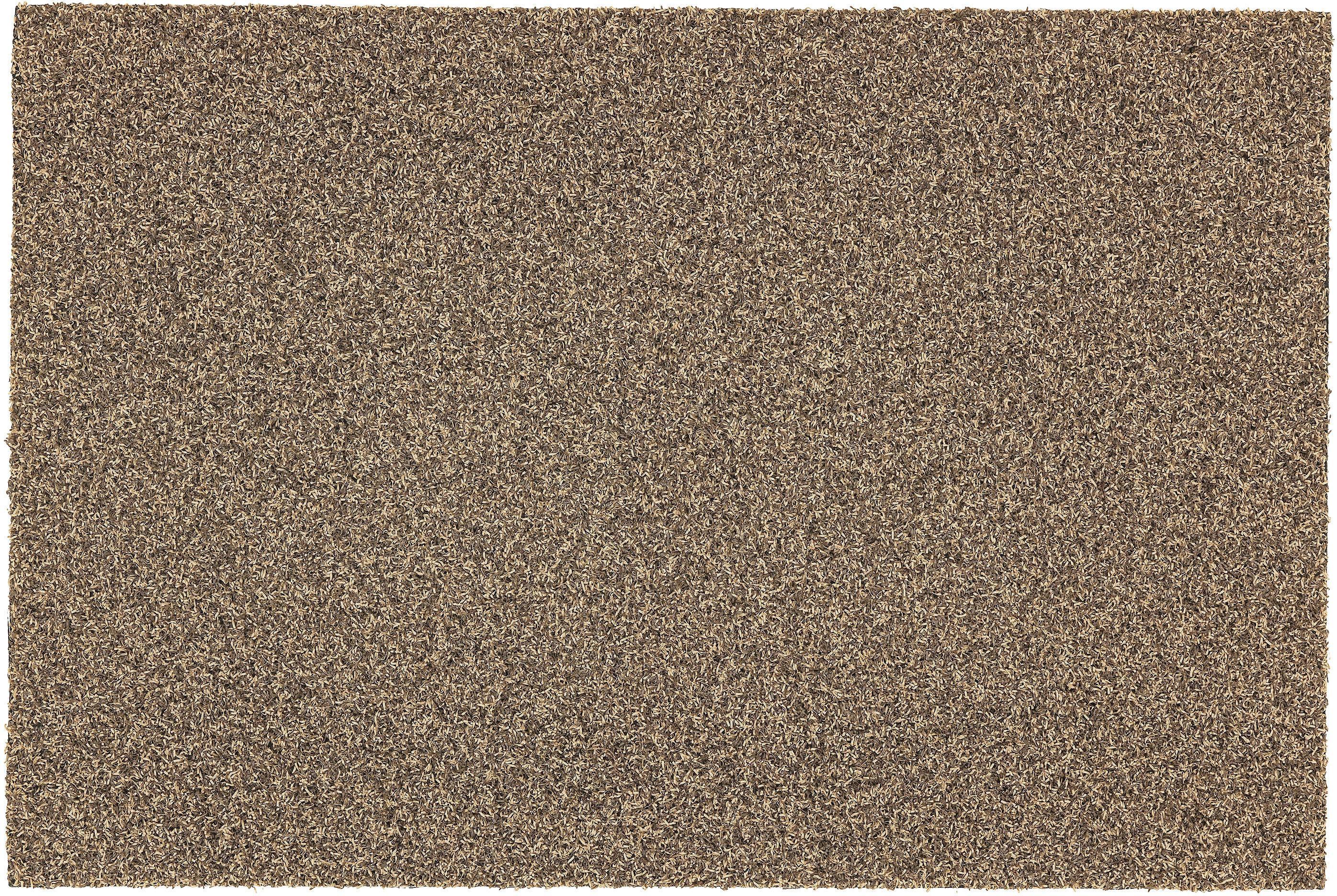 Image of Fussmatte, »Brush Line 240«, ASTRA, rechteckig, Höhe 11 mm, maschinell getuftet
