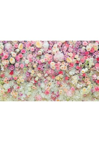 CONSALNET Fototapete »Blumen«, Vlies, in verschiedenen Grössen kaufen