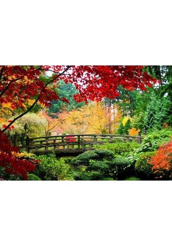 Fototapete »Bridge in Japanese Garden«, Home affaire kaufen