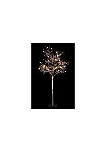 Baum Fairy Tale, STT, »1.8 m Braun 180 LED« kaufen