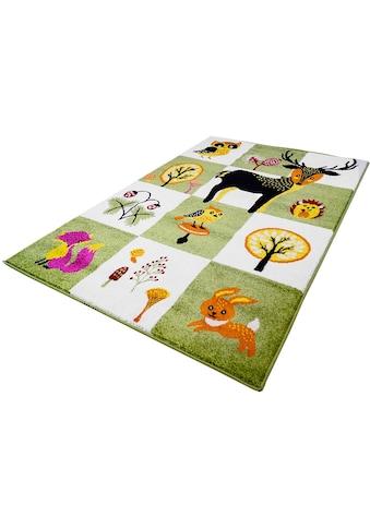 Carpet City Kinderteppich »Moda Kids 1510«, rechteckig, 11 mm Höhe, Wald Tiere,... kaufen