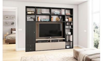 Wohnwand »TORO 372-4« kaufen