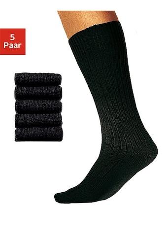 Chaussettes de bureau résistantes Cotton Republic (5 paires) tige longue acheter