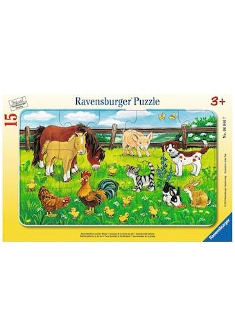 Ravensburger Puzzle »Bauernhoftiere auf d.Wiese« kaufen