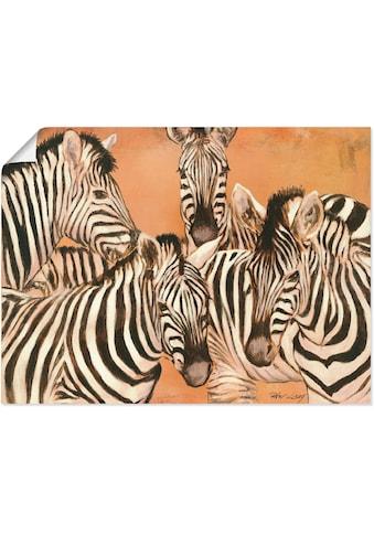 Artland Wandbild »Zebras« kaufen