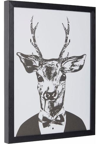 Home affaire Kunstdruck »Reh im eleganten Anzug« kaufen