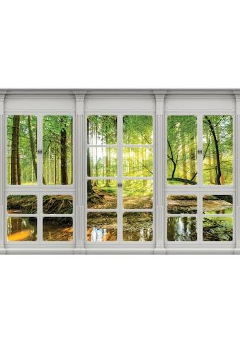 CONSALNET Vliestapete »Sonnenwald Fensterblick«, verschiedene Motivgrössen, für das Büro oder Wohnzimmer kaufen