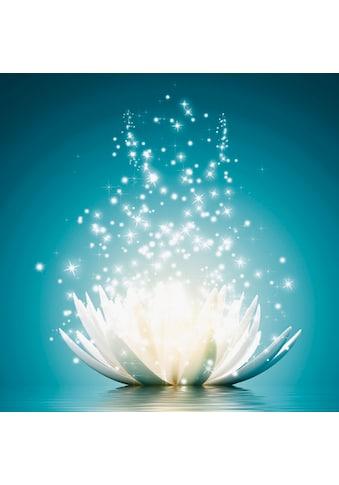Premium collection by Home affaire Bild »V. Georgiev: Magie der Lotus-Blume« kaufen