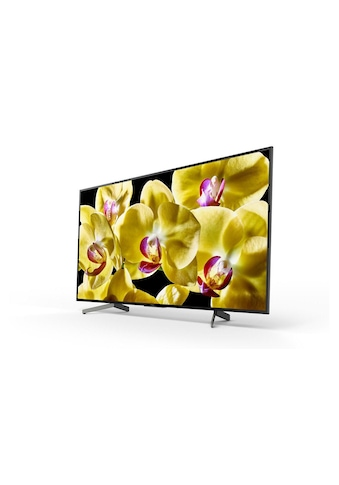 TV, Sony, »KD - 75XG8096« kaufen