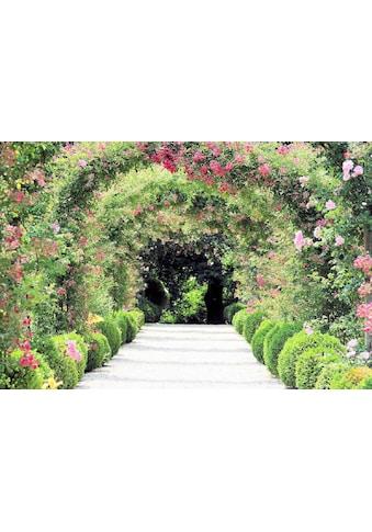 Fototapete »Rose Arch Garden«, Home affaire kaufen