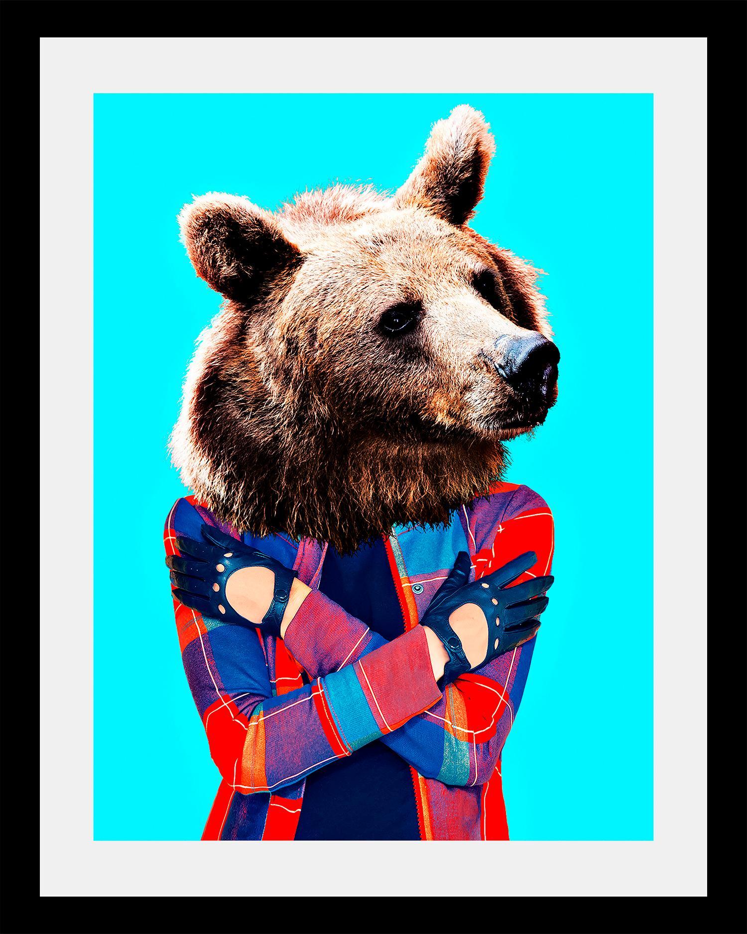 Image of Bild »Bär«