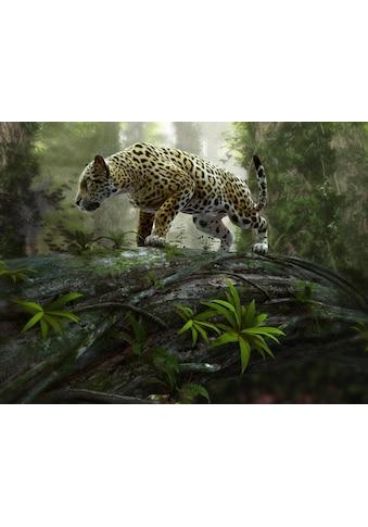 Fototapete »Jaguar on the Prowl«, Home affaire kaufen
