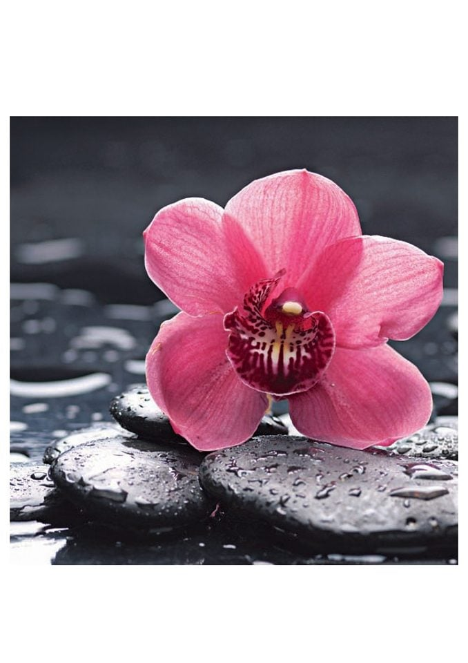 Image of Glasbild, Artland, »Still life with pepple and macro of orchid with water drops«, in 2 Grössen