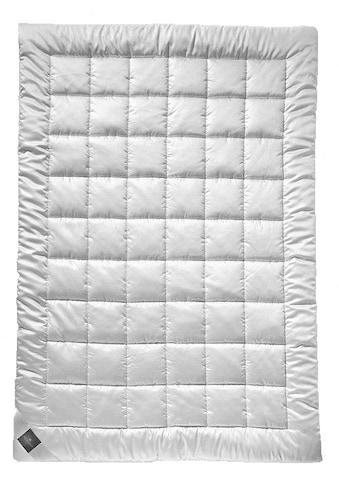 billerbeck Einziehdecke »Faserduvet, Billerbeck, »Clivia Uno««, Füllung 100% Polyester, AIRSOFT clean®, Hohlfaser, Bezug 100% Polyester, Microfasergewebe, Öko-Tex Standard 100, (1 St.) kaufen
