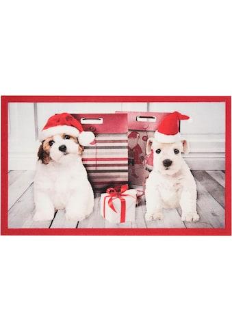 Fussmatte, »Christmas Dogs«, HANSE Home, rechteckig, Höhe 7 mm, maschinell getuftet kaufen