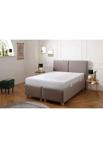 DELAVITA Komfortschaummatratze »Chur«, (1 St.), Leichte Schaum-Matratze für ein müheloses Handling & Top-Hygiene kaufen