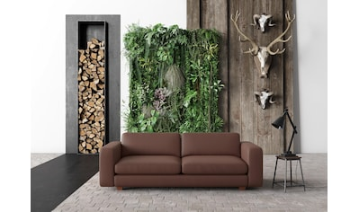machalke® 3-Sitzer »valentino«, mit breiten Armlehnen, Füsse Walnuss, Breite 221 cm,... kaufen