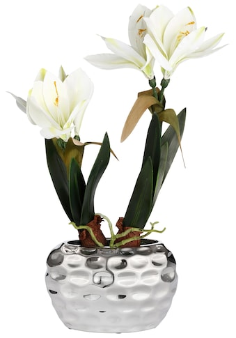 Kunstblume »Amaryllis« kaufen