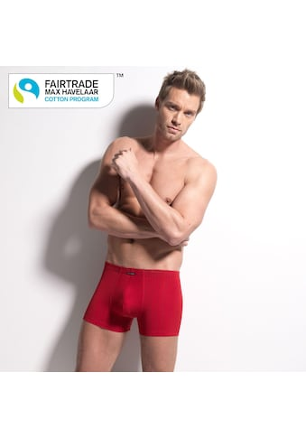 ISA Bodywear Panty »Andy 315113 - Fairtade«, (1 St.) kaufen