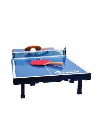 Mini-Tischtennisplatte kaufen