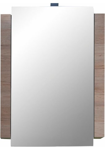 trendteam Spiegelschrank »Campus« kaufen