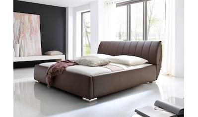 meise.möbel Polsterbett, mit Lattenrost und Bettkasten kaufen