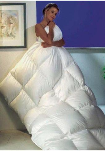 Balette Daunenbettdecke »Prestige - extra warm«, Füllung neue, reine Entendaunen, 90%, silberfarbenweiss, Bezug 100% Baumwolle, Cambric Soft, (1 St.) kaufen