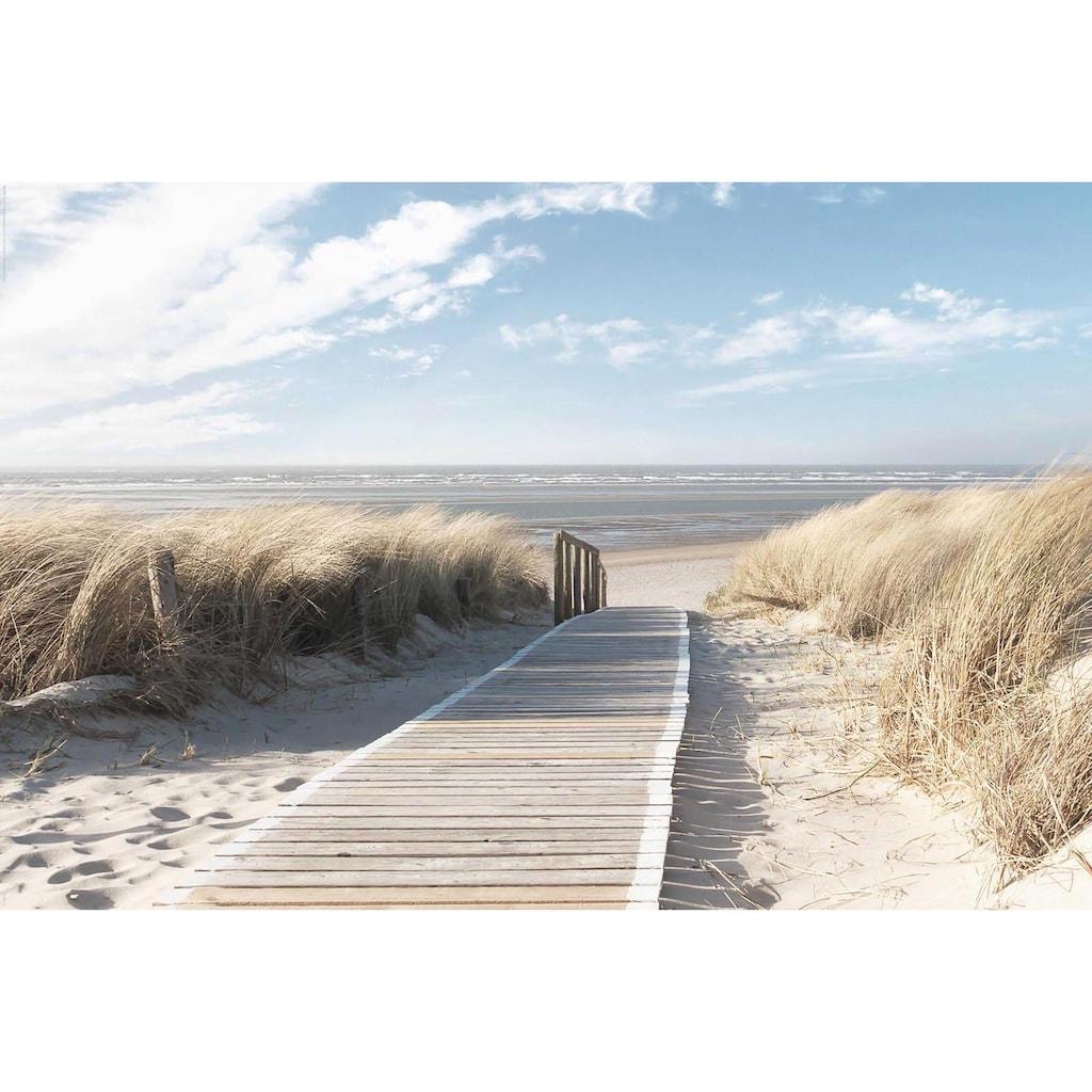 Deco-Panel »Nordsee Dünen«