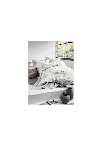 Divina Bettbezug »Exquisita«, (1 St.) kaufen