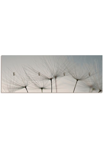 Artland Schlüsselbrett »Pusteblumen-Samen I«, aus Holz mit 4 Schlüsselhaken –... kaufen