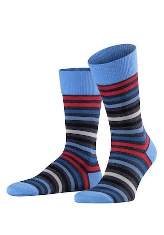 FALKE Socken Tinted Stripe (1 Paar) kaufen