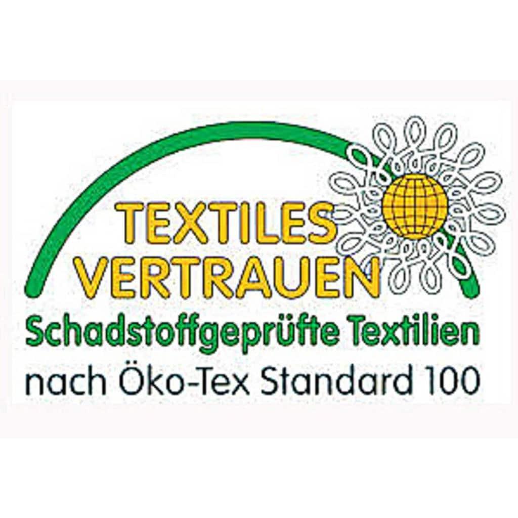 Kyburz Einziehdecke »Aloe Vera«, Füllung 100% Polyester - Hochbausch, Bezug Microfaser - 100% Polyester, (1 St.)
